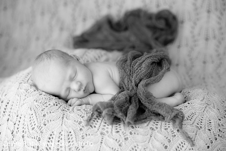 photographe bébé nantes, photographe naissance, photographe nouveau-né, photographe nantes, séance photo naissance, photographe maternité idépendant, nouveau-né, bébé, célinepiat photographe, living colors studio, portraits naissance