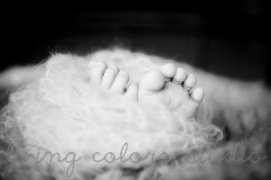 photos-de-bebe-a-domicile-nantes (6)